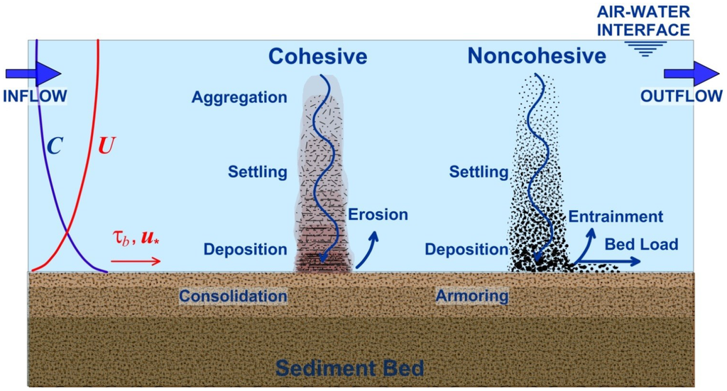 The modelling of cohesive sediment transport